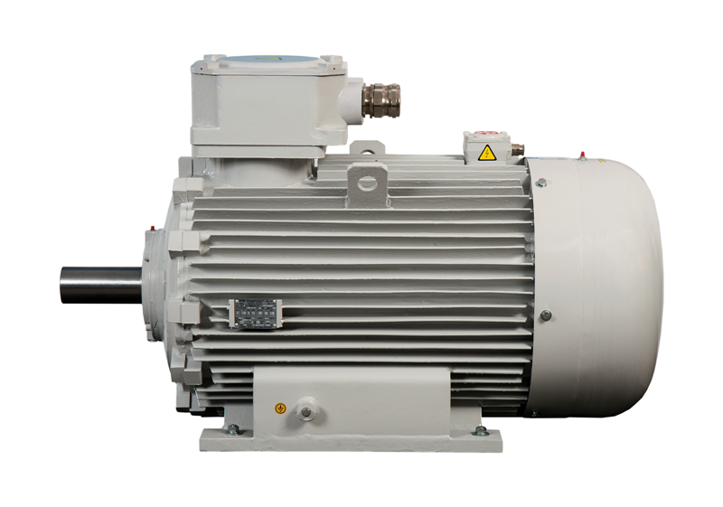 Exd flameproof motors