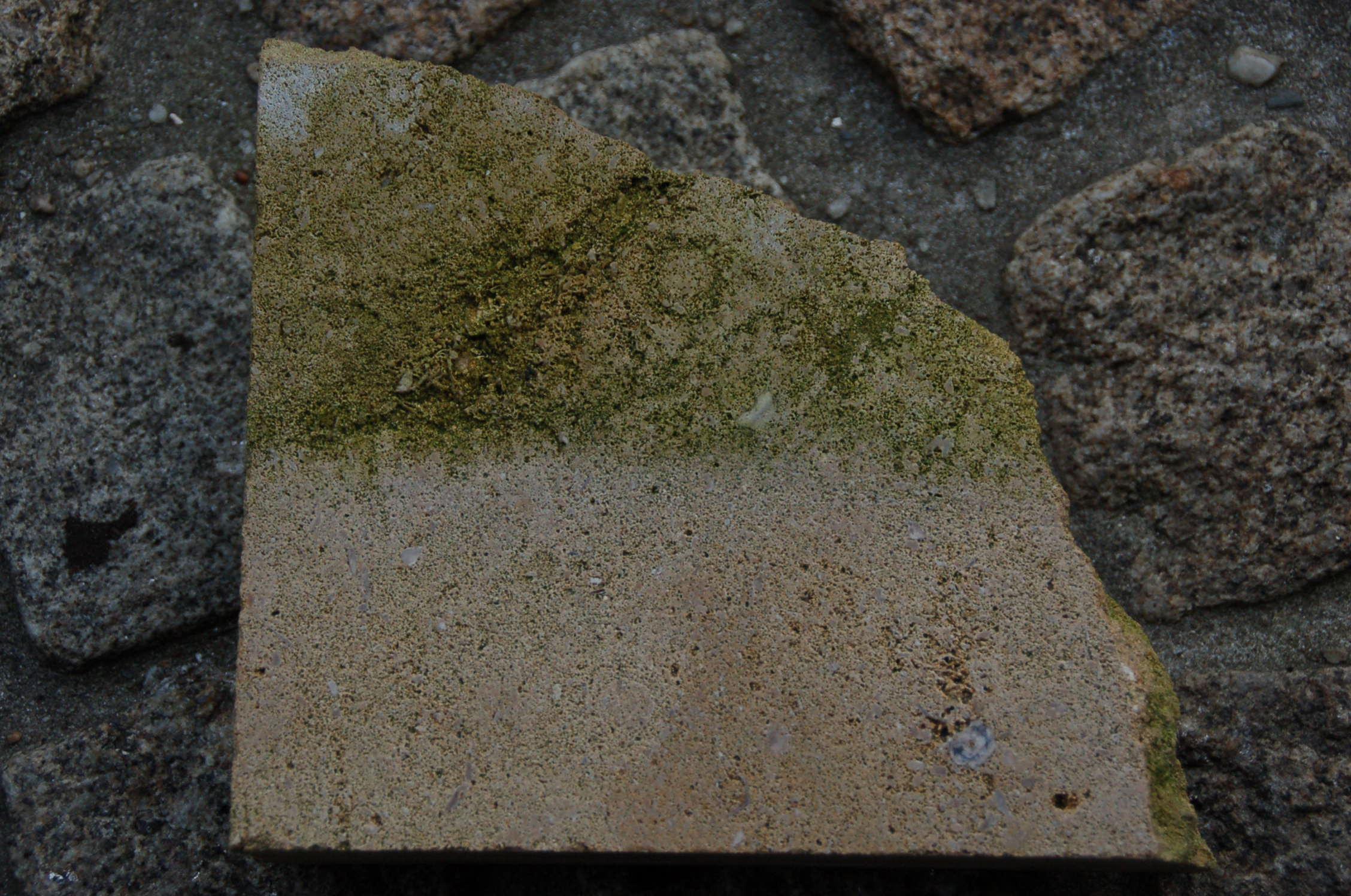 Ochrana kamene proti mechům - vosk HORSEMEN STONE Společnost Acolor s.r.o. nabízí vosk HORSEMEN STON...