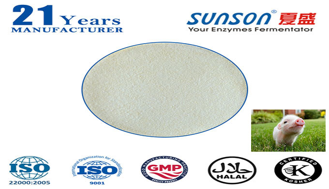 complex enzyme for animal feed Nutrizyme SFQ-081--professional enzyme manufacturer since 1996