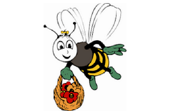 Miel de printemps et Miel mille fleurs