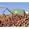 Production & Utilisation- 350 000 tonnes de bois sciées par an- 1ère scierie française spécialisée d...