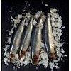 L'histoire du sel est très étroitement liée au développement des pêcheries et des conserveries. Nous...